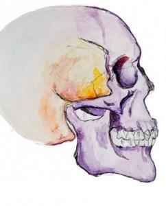 Craniofacial bones-pat